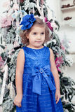 Little girl in a  blue dress  near Stock Photography
