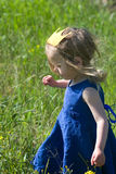 Little girl in a blue dress and yellow crown walks Stock Photos