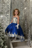 Little girl in a blue velvet dress Stock Photos