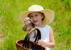 Little girl at a blueberry farm Stock Photography