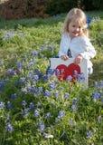 I Love Bluebonnets. Little girl in a bluebonnet flower field in Texas Royalty Free Stock Images