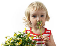 A little girl with a bouquet of flowers Royalty Free Stock Photo