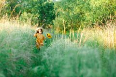 Little girl with a bouquet of wild yellow flowers run in the meadow sunny summer day in a straw hat. Copy space royalty free stock images