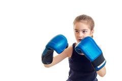 Little girl boxer in blue gloves. Isolated on white background Royalty Free Stock Images
