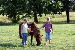Little girl and boy with horse Stock Images