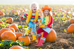 Kids picking pumpkins on Halloween pumpkin patch. Little girl and boy picking pumpkins on Halloween pumpkin patch. Children playing in field of squash. Kids pick stock image