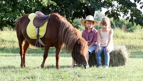 Little girl and boy with pony horse stock video