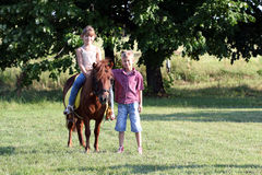 Little girl and boy with pony horse on field Stock Photo
