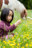 Little girl break yellow flowers Royalty Free Stock Photo