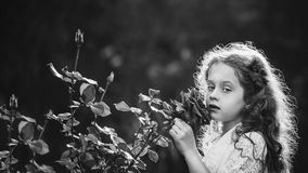 Little girl breathe scent of rose flowers. Black and white portr Royalty Free Stock Photos
