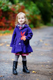 Little girl in bright blue coat at autumn Stock Photography