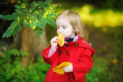 Little girl in bright red coat at autumn Stock Images