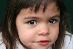 Little girl with brown eyes. Little girl with large brown eyes Stock Photography
