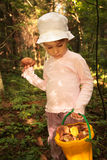 Little girl with bucket of mushrooms in wood Stock Photos