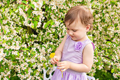 Little girl with bush blossoming and dandelion Stock Photo