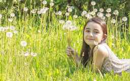 Little Girl Busy Blowing Dandelion Stock Photography