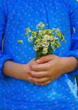 Little girl with camomile flowers Royalty Free Stock Images
