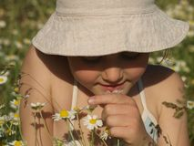 Little girl with a camomile in her hand in the middle of the chamomile field stock photo