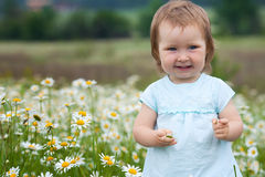 Little girl on the camomile meadow Stock Images