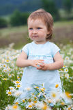 Little girl on the camomile meadow Stock Photos