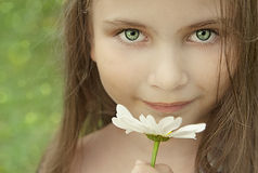 Little girl with a camomile in summer Royalty Free Stock Photography