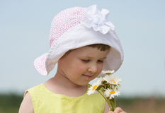 Little girl with camomiles Royalty Free Stock Photos