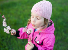Little girl in cap with dandelion Royalty Free Stock Photo
