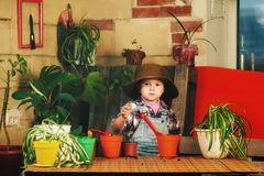 A little girl caring for potted flowers. Little girl caring for houseplants Stock Photo