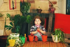 A little girl caring for potted flowers. Little girl caring for houseplants Royalty Free Stock Images