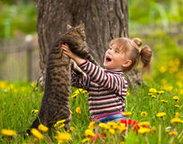 Little girl and cat. Funny lovely little girl playing with a cat Stock Images