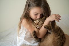 Little girl with cat Stock Images