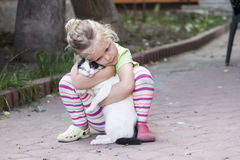 Little girl with cat. Little girl cuddles a white cat stock photos