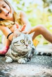 Little girl with a cat outdoors. Little girl playing with a british cat outdoors Royalty Free Stock Images