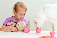 Little girl and cat playing Royalty Free Stock Photos
