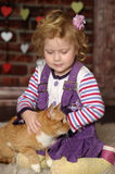 Little girl with cat. Little girl with a red cat Stock Image