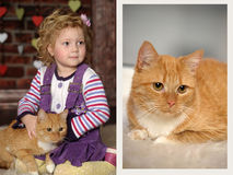 Little girl with cat. Little girl with a red cat Stock Photos