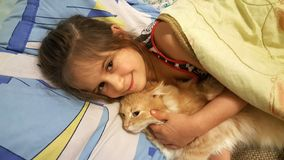 Little girl with a cat stock photos