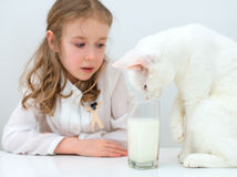 Little girl with cat. Stock Images