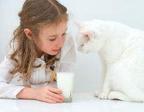 Little girl with cat. Stock Photo