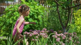 Little Girl Catching a Butterfly on Flowers. In a Garden in Sunny Summer Day. The Concept of a Happy Childhood stock video footage