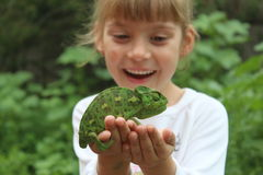 Little girl and a chameleon Royalty Free Stock Photography