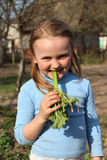 Little girl chewing young sprout of a rhubard Stock Photos