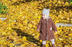Little girl child baby in a coat and hat game makes its first steps in autumn park among fallen yellow maple leaves Stock Photography