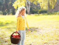 Little girl child and basket with apple in autumn Stock Image