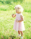 Little girl child blowing dandelion flower in spring Royalty Free Stock Image