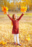 Little girl child having fun with yellow maple leafs in sunny autumn Royalty Free Stock Photos