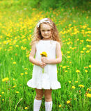 Little girl child outdoors on the grass with yellow dandelion. Flower in sunny summer day stock photography