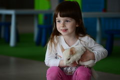 Little girl and chinchilla Stock Photography