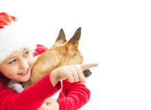 Little girl in Christmas clothes Stock Photo