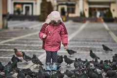 Little girl in a city square feeding pigeons Royalty Free Stock Image